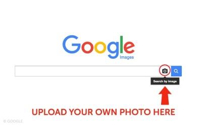 Google-Images.Brandsynario.jpg